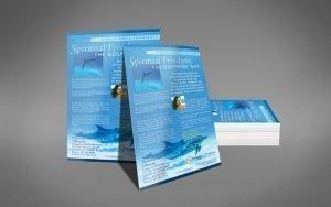 silverseasdolphinsflyer